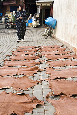 Dyed leather hides drying in street in the souk, Medina, Marrakech (Marrakesh), Morocco, North Africa, Africa