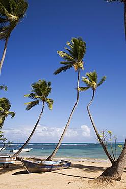 Las Terrenas, Samana Peninsula, Dominican Republic, West Indies, Caribbean, Central America