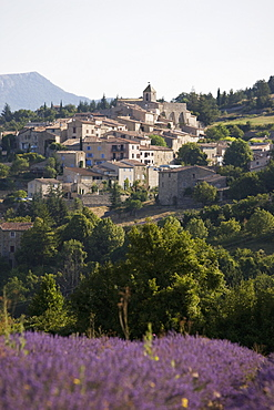 Aurel, Vaucluse, Provence, France, Europe