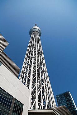 Looking up at Tokyo Skytree tower, Tokyo, Japan, Asia