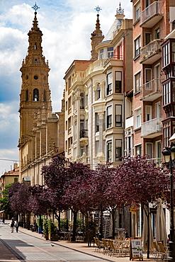 Calle Portales with Santa Maria de la Redonda Cathedral in Logrono, La Rioja, Spain, Europe