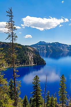 Cloud reflected in the still waters of Crater Lake, the deepest lake in the U.S.A., part of the Cascade Range, Oregon, United States of America, North America
