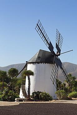 Windmill at the Museo del Queso Majorero near Antigua in Fuerteventura, Canary Islands, Spain, Atlantic, Europe