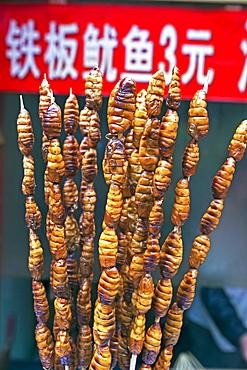 Larvae on skewers for sale at Dong Hua Men night market, Beijing, China, Asia