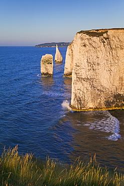 The Pinnacles, Studland, Isle of Purbeck, Dorset, England, United Kingdom, Europe