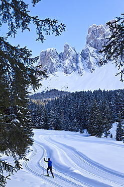 Man cross-country skiing, Puez Odle National Park, Dolomites, South Tirol, Trentino-Alto Adige, Italy, Europe