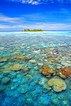 Tropical island surrounded by coral reef, The Maldives, Indian Ocean, Asia
