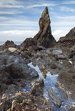 Sea stack on the rugged South Hams coastline near Hope Cove, Devon, England, United Kingdom, Europe