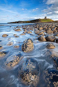 Dunstanburgh Castle from the rocky shores of Embleton Bay, Northumberland, England, United Kingdom, Europe