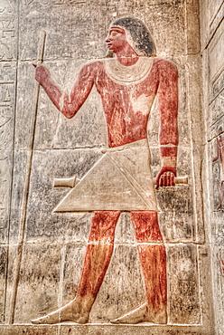 Reliefs, Mastaba of Kagemni, Necropolis of Saqqara, UNESCO World Heritage Site, Saqqara, Egypt, North Africa, Africa