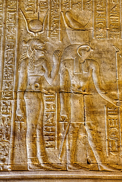 Goddess Hathor on the left with God Horus on right, Bas Reliefs, Sanctuary of Horus, Temple of Horus, Edfu, Egypt, North Africa, Africa