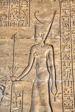 Pharaoh, Bas Relief, Hypostyle Hall, Temple of Khnum, Esna, Egypt, North Africa, Africa