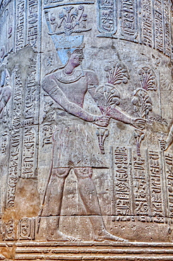 Bas Reliefs, Column, Hypostyle Hall, Temple of Khnum, Esna, Egypt, North Africa, Africa