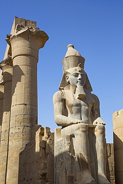 Colossus of Ramses II, Court of Ramses II, Luxor Temple, UNESCO World Heritage Site, Luxor, Thebes, Egypt, North Africa, Africa