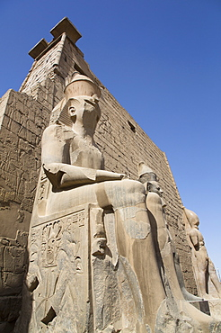 Colossus of Ramses II in front of Pylon, Luxor Temple, UNESCO World Heritage Site, Luxor, Thebes, Egypt, North Africa, Africa