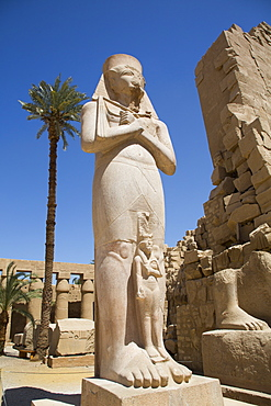 Statue of Ramses II, Great Court, Karnak Temple Complex, UNESCO World Heritage Site, Luxor, Thebes, Egypt, North Africa, Africa