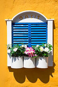 Flowers with House Window, Emborio Harbor, Halki (Chalki) Island, Dodecanese Group, Greece