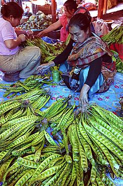 Woman selling Myanmar Tree Beans in Ima women's market, Imphal, Manipur, India, Asia