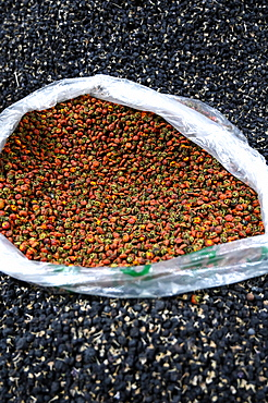 Goji berries, black and red, for sale in Shazhou street market, Dunhuang, Gansu, China, Asia