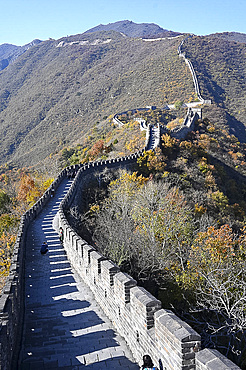 Great Wall of China, Mutianyu section, looking west towards Jiankou, UNESCO World Heritage Site, Beijing, China, Asia