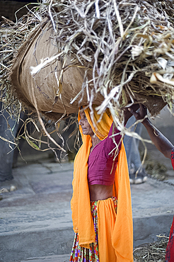 Woman in pink and orange carrying straw on her head to elephant stable, Amber, Rajasthan, India, Asia