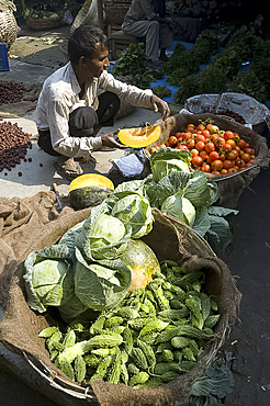 Vegetable wallah preparing pumpkin with baskets of tomatoes, cabbages and bitter gourd in early morning market on the banks of the Brahmaputra river, Guwahati, Assam, India, Asia