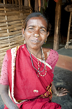 Desia Kondh tribal woman wearing traditional gold noserings and earrings, Bissam Cuttack, Orissa, India, Asia