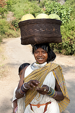 Dunguria Kondh tribeswoman wearing traditional tribal hairgrips and jewellery, carrying basket of melons, Bissam Cuttack, Orissa, India, Asia