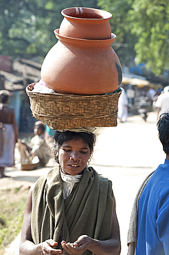 Dunguria Kondh woman with tribal noserings carrying terracotta pots in a basket on her head, Bissam Cuttack, Orissa, India, Asia