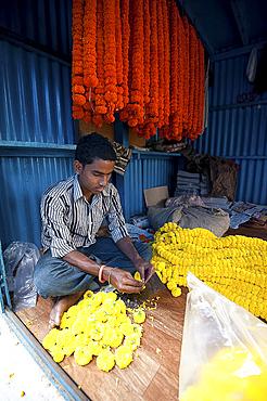 Mala maker (garland maker) at work with orange and yellow marigolds in morning flower market, Howrah, Kolkata, West Bengal, India, Asia