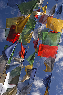 Budhhist prayer flags fluttering in the wind, Darjeeling, West Bengal, India, Asia