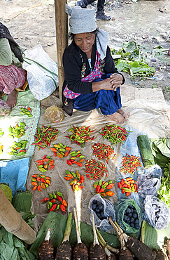 Naga woman at her market stall selling a selection of different chillies, Tizit market, Nagaland, India, Asia