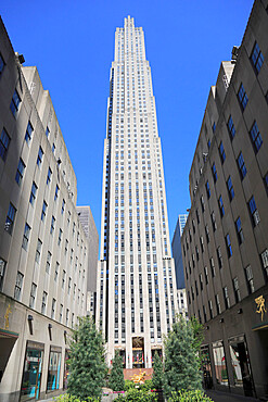 Rockefeller Center, 5th Avenue, Midtown, Manhattan, New York City, USA