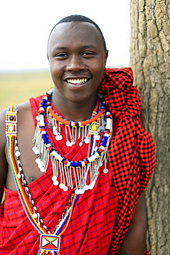 Portrait of a Masai man wearing colorful traditional clothes, Masai Mara Game Reserve, Kenya, East Africa, Africa