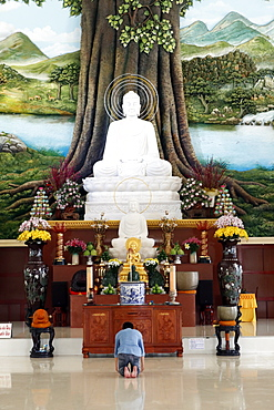 Van Linh Buddhist pagoda, man praying to the Buddha, the Enlightenment of the Buddha statue, An Hao, Vietnam, Indochina, Southeast Asia, Asia