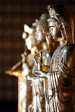 Khai Doan King Honored Pagoda, Quan Am (Guan Yin), the Bodhisattva of Compassion (Goddess of Mercy), Buon Me Thuot, Vietnam, Indochina, Southeast Asia, Asia