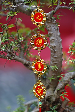 Chinese New Year celebration decoration, Ho Chi Minh City, Vietnam, Indochina, Southeast Asia, Asia