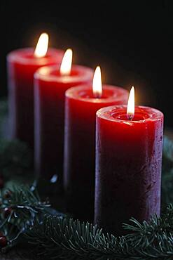Natural Advent wreath or crown with four burning red candles, Christmas composition, France, Europe
