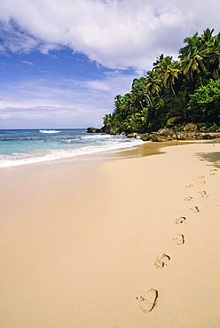 Playa Grande, Dominican Republic, West Indies, Caribbean, Central America