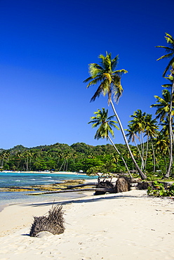 Playa Rincon, Las Galeras, Semana peninsula, Dominican Republic, West Indies, Caribbean, Central America