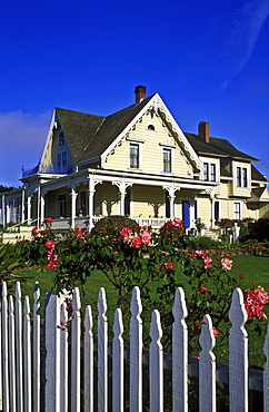 Victorian home with rose garden and white picket fence offering bed and breakfast, Mendocino, California, United States of America, North America