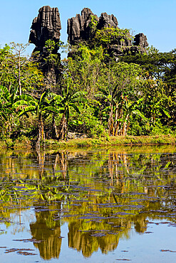 Eroded limestone rock towers reflected in fish pond at karst area, Rammang-Rammang, Maros, South Sulawesi, Indonesia, Southeast Asia, Asia