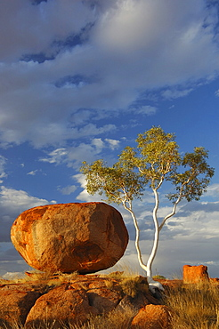 The Devils Marbles (Karlu Karlu), Northern Territory, Australia