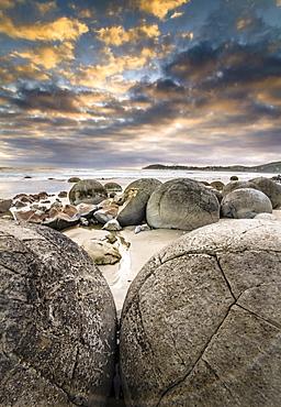 Moeraki Boulders, geological feature, round rock balls, some fragments lying broken in ruins on the beach, Coastal Otago, Moeraki, South Island, New Zealand, Oceania