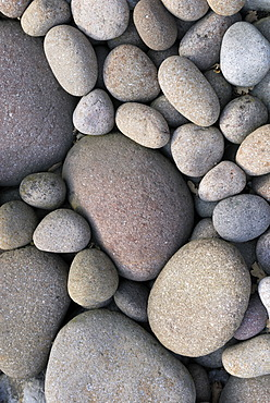 Smoothly ground pebbles from the Isar River, Upper Bavaria, Germany, Europe