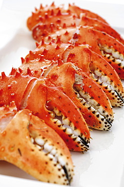 Crab pincers on a plate
