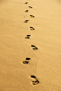 Human footprints, barefoot, footprints in yellow sand, sandy beach, Ceylon, Sri Lanka, South Asia, Asia