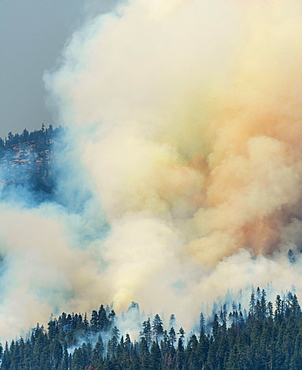 Clouds of smoke of a wildfire, Yosemite National Park, California, USA, North America