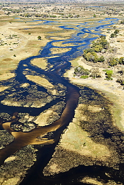 The Gomoti River with its channels, islands, sandbanks and adjoining freshwater marshland, aerial view, Okavango Delta, Botswana, Africa