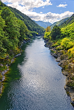 Buller River Gorge, Tasman Region, Southland, New Zealand, Oceania